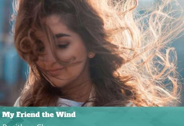 My Friend the Wind
