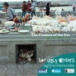 cosmos of the cat the ugly writers