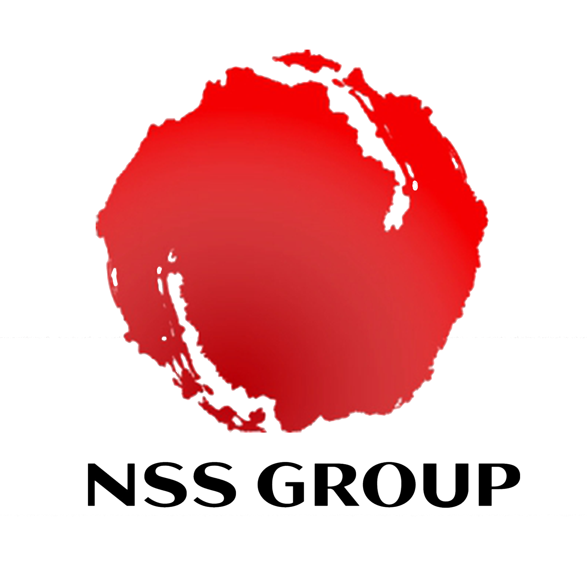 The NSS Group Web Hosting Services - The Ugly Writers
